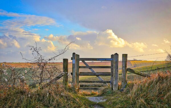 kissing gate south downs
